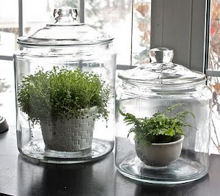 Great look! Get these jars at Goodwill or Thrift Town for under $5.00