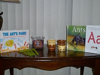 Learning about Ants the fun way