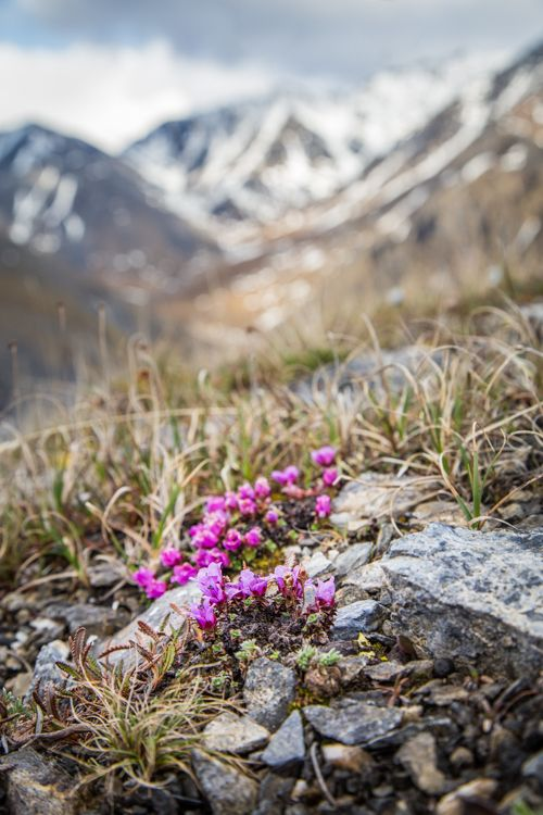 Tips To Improve Your Spring Landscape Photography With Images Spring Landscape Photography Spring Landscape Landscape Photography Tutorial