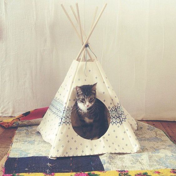 diy tipi pour chat diy pinterest cats pets and cat. Black Bedroom Furniture Sets. Home Design Ideas