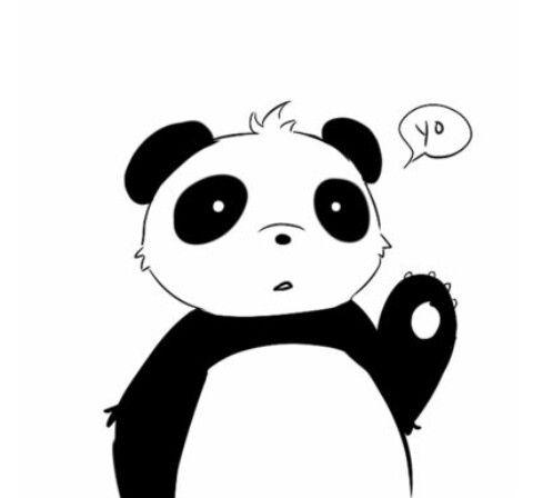 """""""Hi panda"""""""