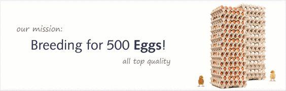 great egg info