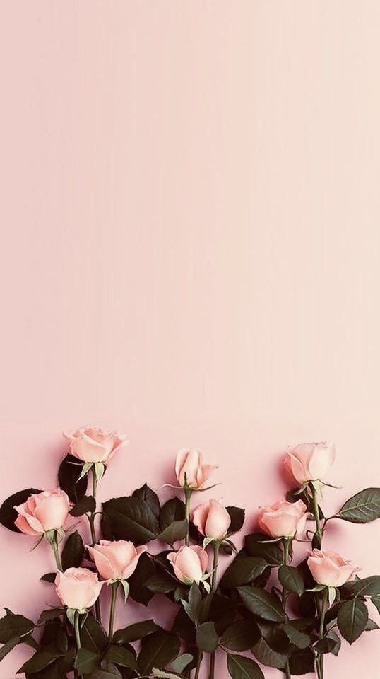 Aesthetic Iphone Pastel Floral Wallpaper Hd In 2020 Floral