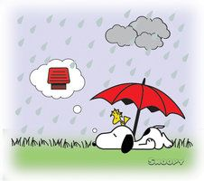 Snoopy in Woodstock camping out yet dreaming of home......