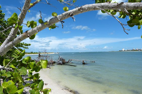 Lovers Key State Park. North side of the island on Big Carlos Pass. That's the Southern end of Fort Myers Beach on the other side. Cheers!
