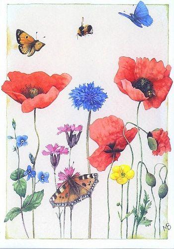 flowers & butterflies - Marjolein Bastin