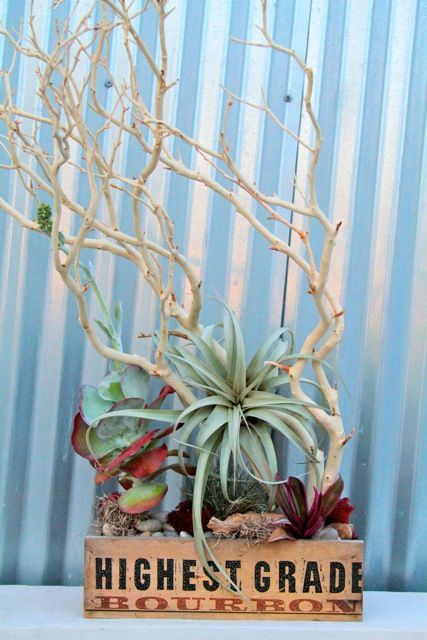 Bar table arrangement, sustainable, funky, airplants and branches