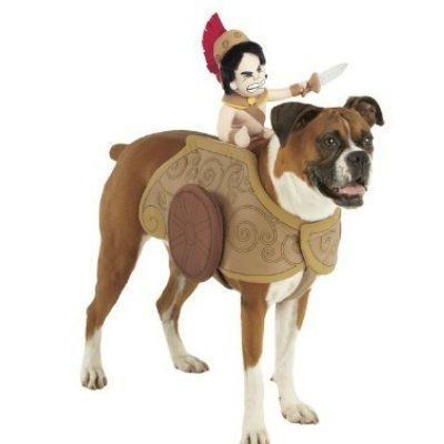 Amazon.com Pet Rider Gladiator Rider Dog Costume Size X,large 30,