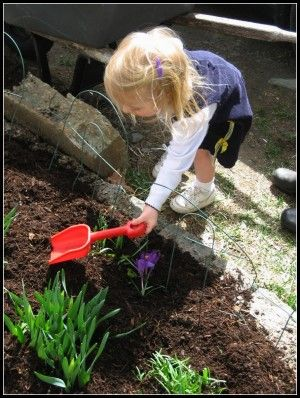 Gardening with kids using themes (I'm thinking the barnyard or dinosaur themes would work for us)