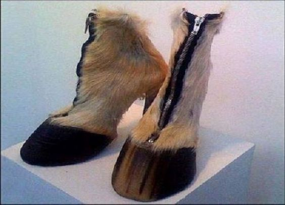 Image Source http://webtablab.com/odd-stuff/most-weirdest-shoes-ever-dare-to-wear/