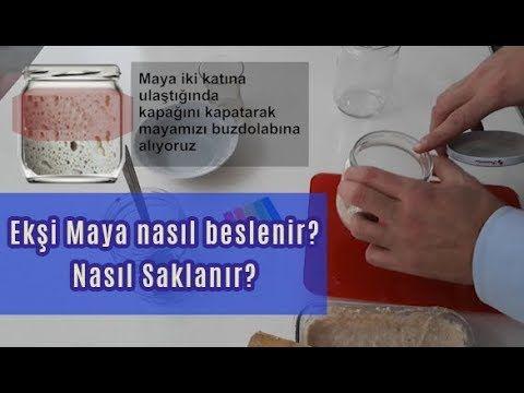 Eksi Maya Nasil Beslenir Saklanir Ve Cogaltilir Youtube