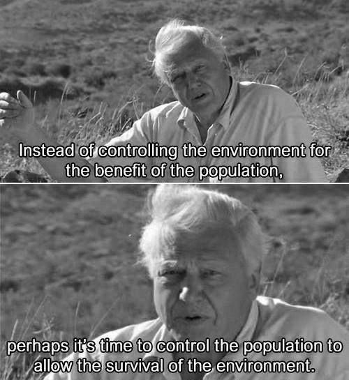 Sir David Attenborough David Attenborough Life Quotes Life