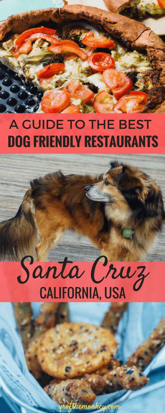 Dog Friendly Restaurants In Santa Cruz California The Ultimate