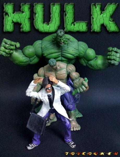 Hulk (Transforming Hulk Set) Custom Action Figure | Hulk ...