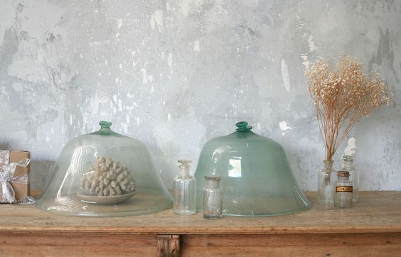 Antique Bell Jars...terrariums, small collections under glass, african violets, shells...