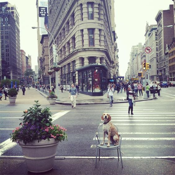 Maddie on Things |  Theron Humphrey