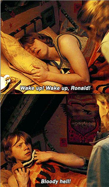 This part never ceases to make me laugh! I love how he covers up like he's naked or something haha o-o: Ron Cover, Favorite Bloody, Favorite Xd, Goblet Of Fire, Ahaha Ron, Harry Potter Recipes