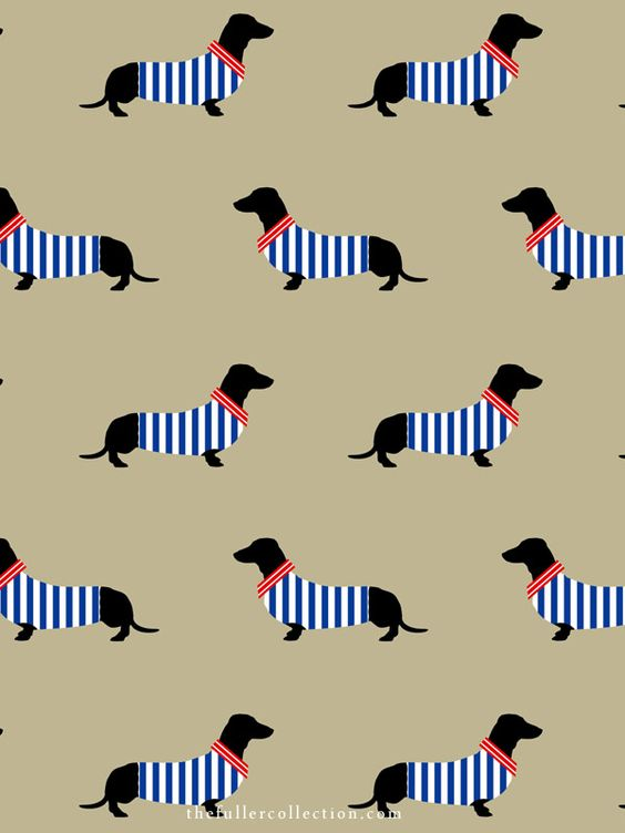 Dapper Dachshund Placemats The Fuller Collection