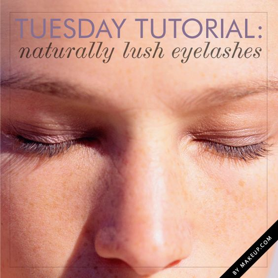 Tuesday Tutorial: Naturally Lush Lashes | LUSH, Makeup and ...
