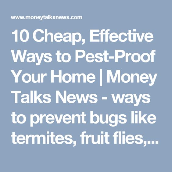 10 Cheap, Effective Ways to Pest-Proof Your Home | Money Talks News  -  ways to prevent bugs like termites, fruit flies, cockroaches, etc, into your home.  some good and basic ideas.      lj