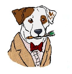 Doctor Wishbone