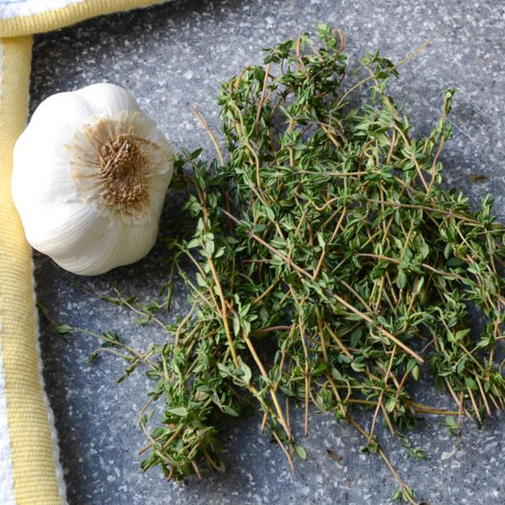 garlic thyme parker house rolls