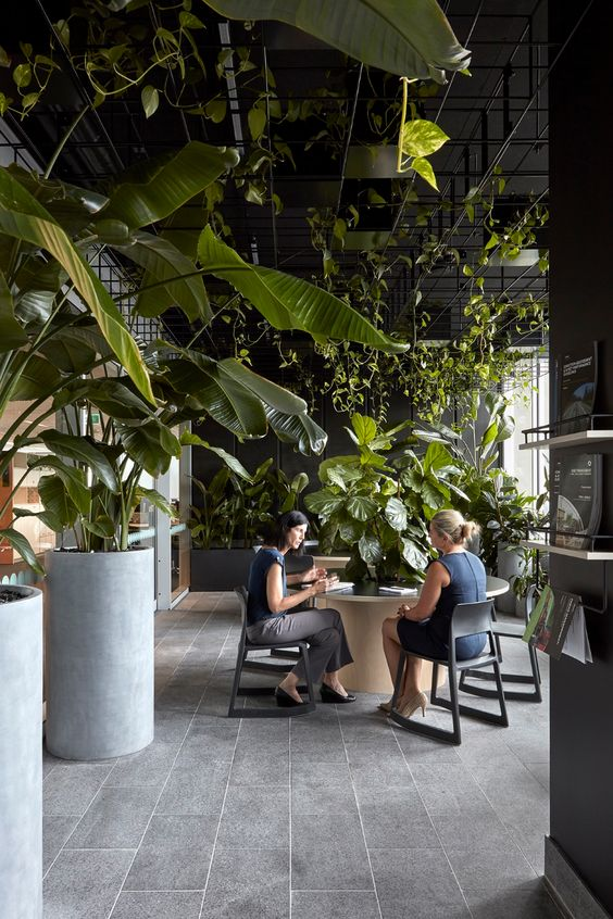 Meeting space with biophilic elements