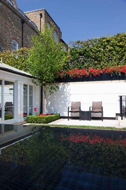Hedge Fence - City Gardens - Small Space Garden Design (houseandgarden.co.uk)