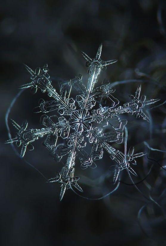 from macro snowflake