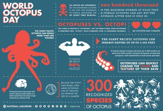 動物の中でも知能が高い種だと言われているタコ。そのタコのすごさが分かるインフォグラフィックをご紹介!