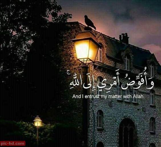 صور ايات قرانيه تصميمات مكتوب عليها آيات قرآنية خلفيات اسلامية للموبايل صور عالية الجودة Quran Quotes Love Islam Facts Islamic Quotes Quran