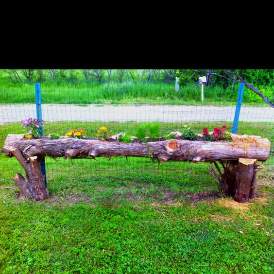 Loving this cedar log planter craft ideas pinterest for Log craft ideas