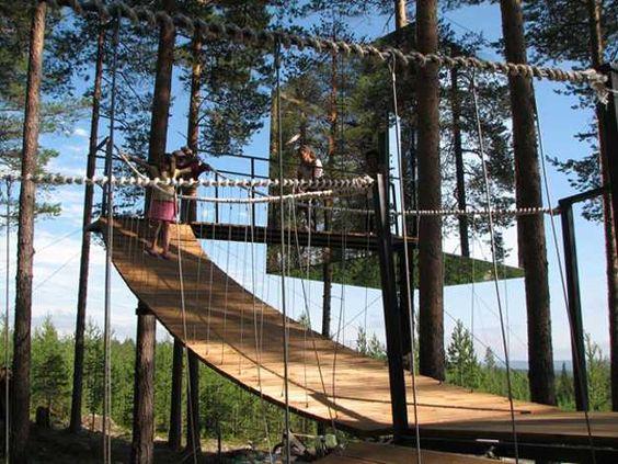 modern tree house design with suspended bridge