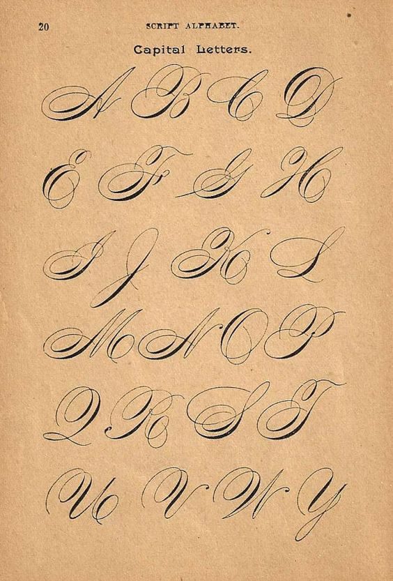 1890s Calligraphy Print Page Capital Letters Ornamental Writing Pen ...