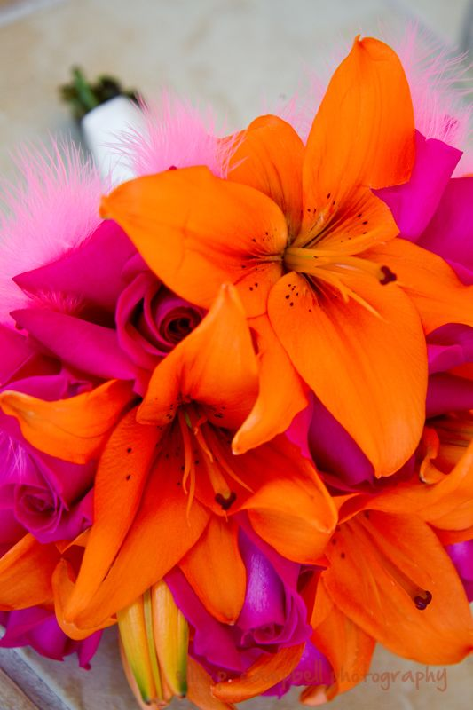 This bright bouquet features Asiatic Lilies and Roses. Both of these popular wedding flowers can be found in a variety of vibrant colors year-round at GrowerBox.com!