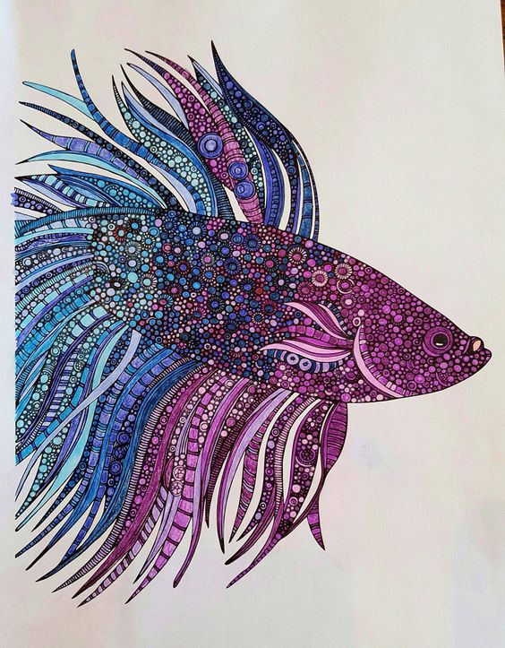 Betta Fish Coloring Page Colored With Pencils In Blues And