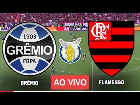 Gremio X Flamengo Ao Vivo Assistir Com Imagem Ao Vivo Brasileirao 2021 Em 2021 Gremio X Flamengo Flamengo Ao Vivo Flamengo