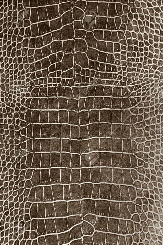 http://www.123rf.com/photo_20325520_dark-brown-crocodile-skin-texture-as-a-wallpaper.html