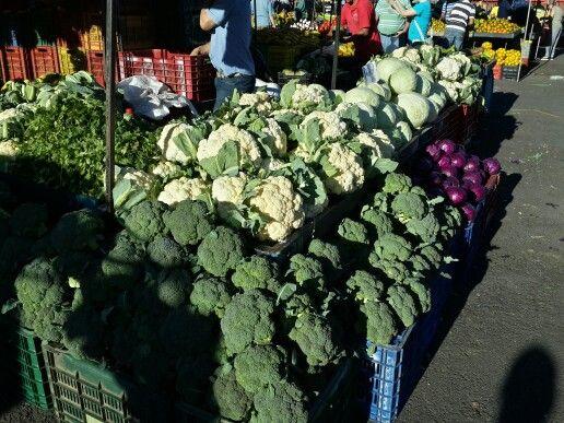 Feria del agricultor / Farmers market
