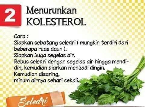 02 Menurunkan Kolesterol Seledri Obat Alami Resep Diet Resep Diet Sehat