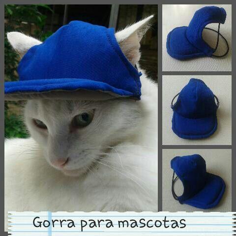 Gorra para mascotas