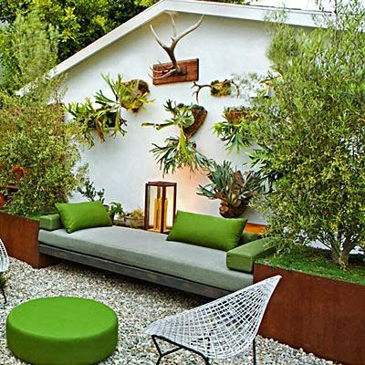 For those who are squeamish about deer antlers in their decor, there is the staghorn fern plant as an alternative.       They are anot...