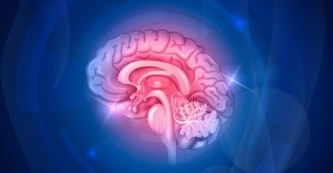 #Υγεία #Διατροφή Εγκεφαλικό επεισόδιο: Το υπεύθυνο γονίδιο ανακάλυψαν οι επιστήμονες ΔΕΙΤΕ ΕΔΩ: http://biologikaorganikaproionta.com/health/220927/