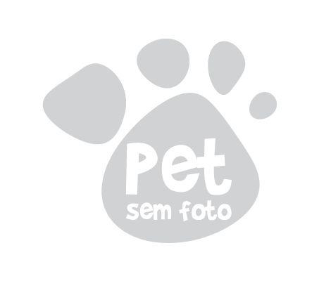 Cruzapet - Meus Pets