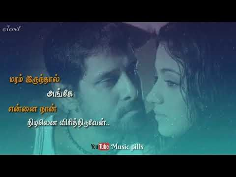Enathuyire Enathuyire Bheema Tamil Whatsapp Status Music Pills Youtube Tamil Video Songs Tamil Songs Lyrics New Album Song