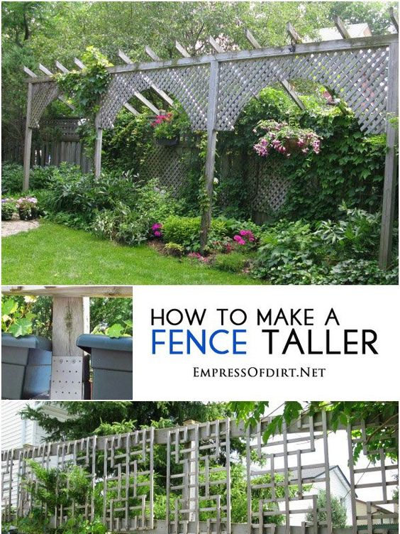 Need more privacy? See how to make a fence taller plus other ideas for creating more privacy in your garden without spending a lot of money.