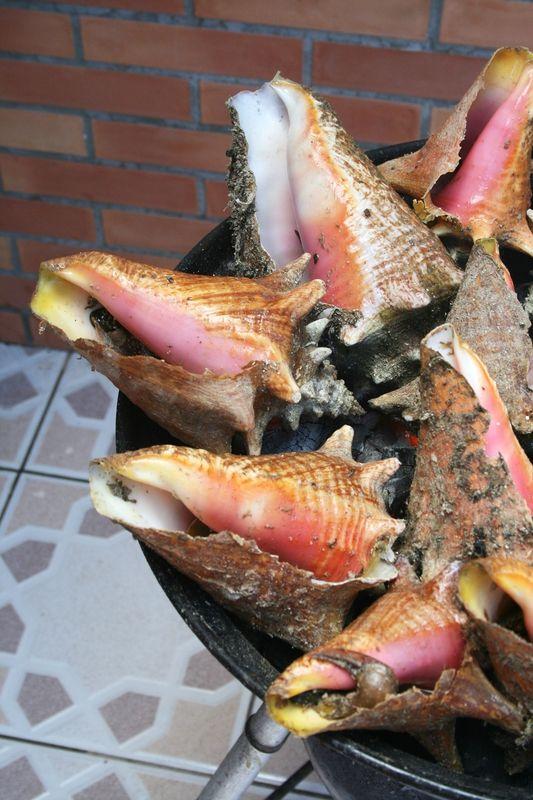 Lambi grillé, #recette antillaise parce que Masterchef a su mettre à l'honneur cette cuisine