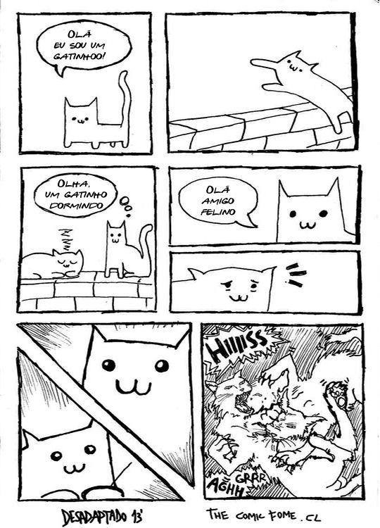 Lógica felina