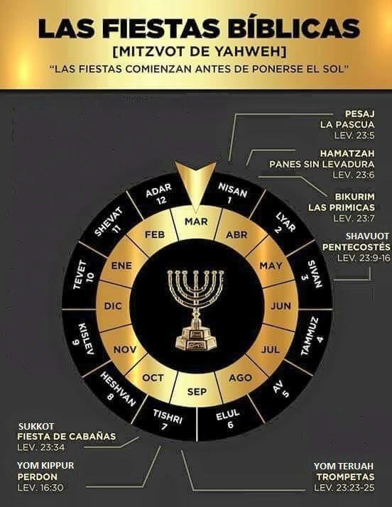 Pin De Noel Antonio Tapia Castillo En Kabbalah Escrituras De La Biblia Biblia Hebrea Biblia Cristiana