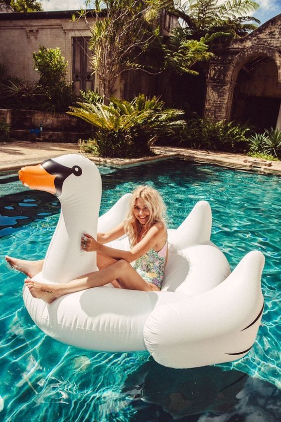Its hard to not have an epic amount of fun when a pool swan is involved www.Nectarsunglas... #its
